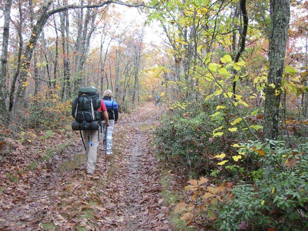 hiking 1563460